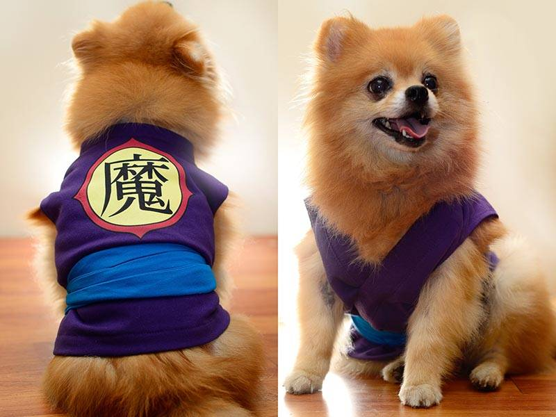 The Handmade Dragon Ball Dog Clothes Turn Your Pet Into